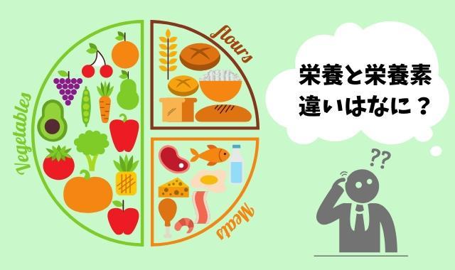 栄養と栄養素の違いは?