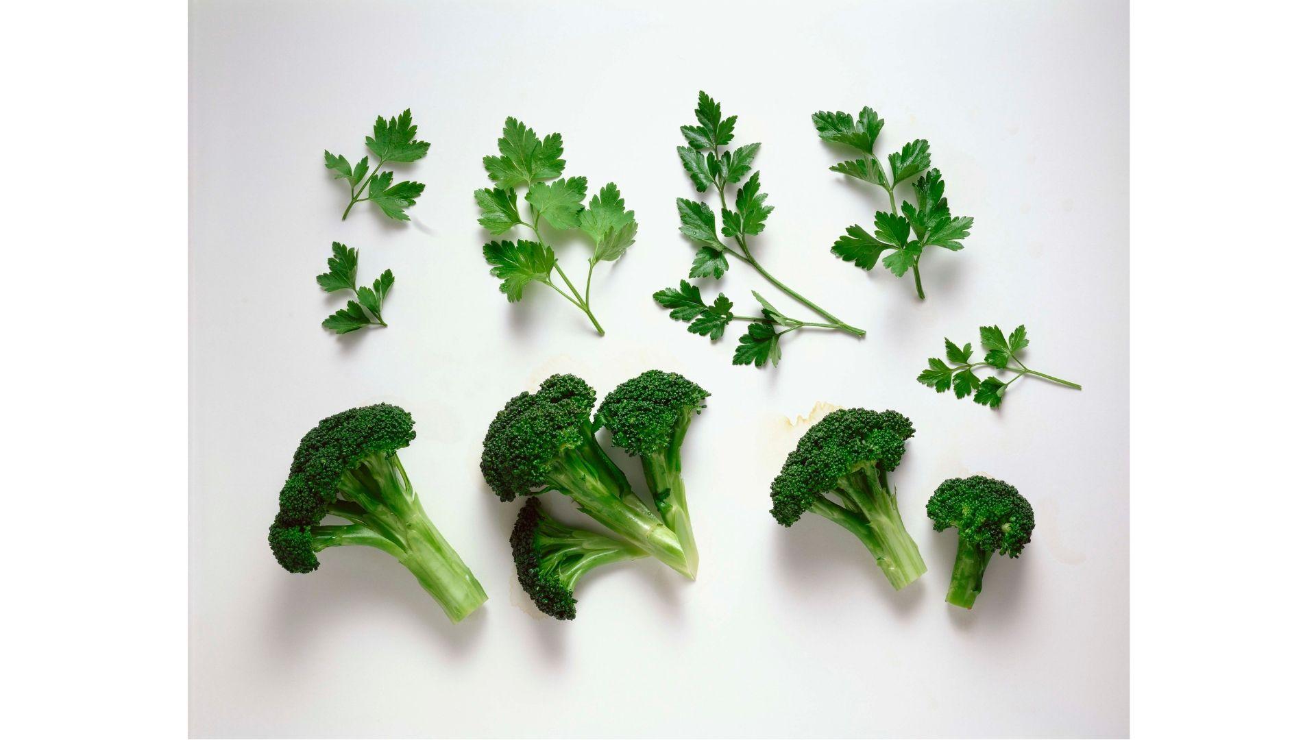 ブロッコリー=野菜の王様