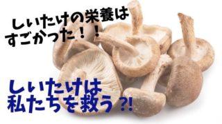 椎茸の栄養はすごい
