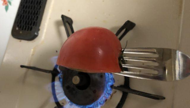 トマトあぶり皮むき実践