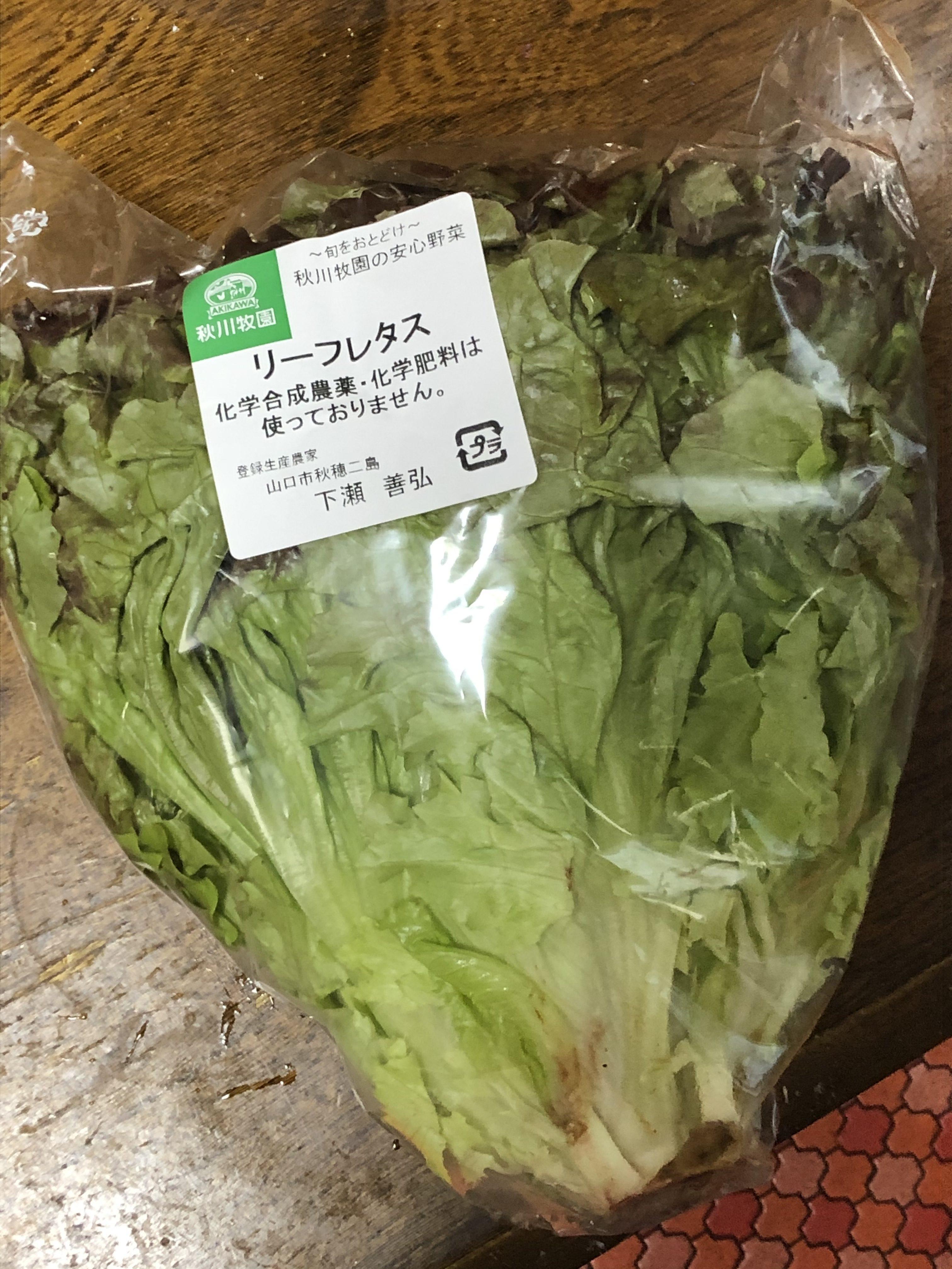秋川サニーレタス