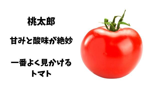 トマト 桃太郎
