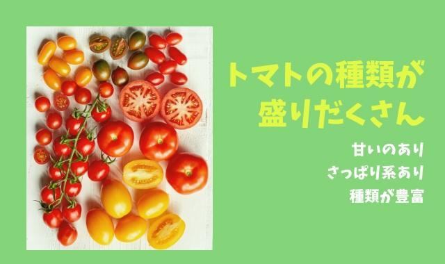 トマト 種類