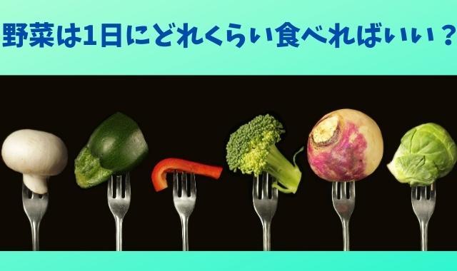 野菜一日摂取量